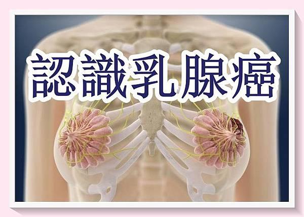 女性三大癌症之乳腺癌3.jpg