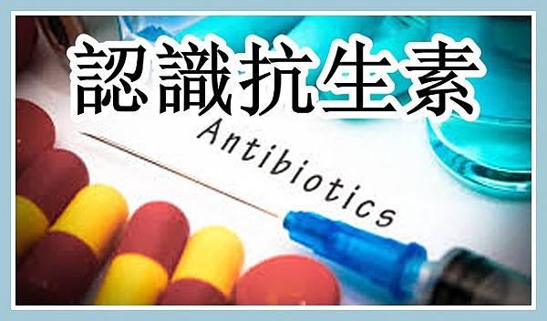 認識抗生素.jpg
