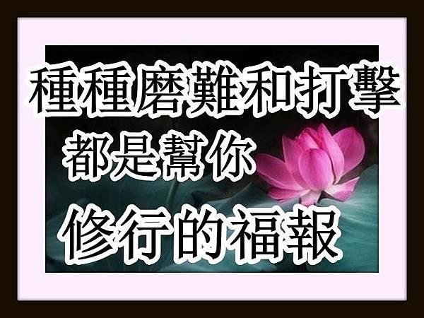 種種磨難和打擊,都是幫你修行的福報!.jpg