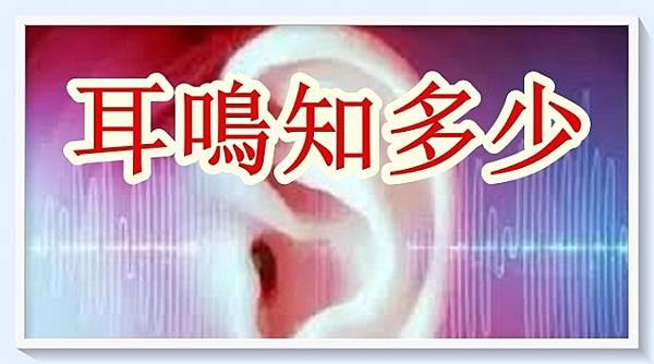 耳 鳴 知 多 少(回應網友).jpg
