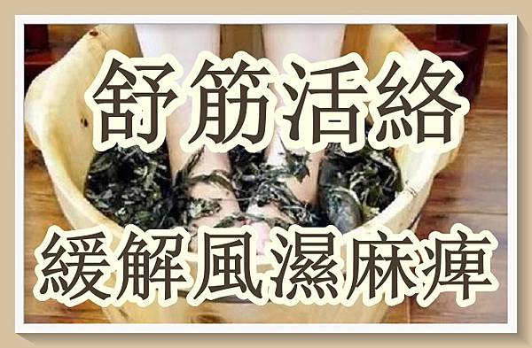 伸筋草泡腳可舒筋活絡、緩解風濕麻痺!.jpg