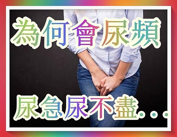 為何會尿頻、尿急、尿不盡、夜尿、尿失禁?原來是…(回應網友).jpg