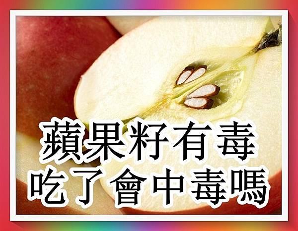 蘋果籽有毒!吃了會中毒嗎?4.jpg