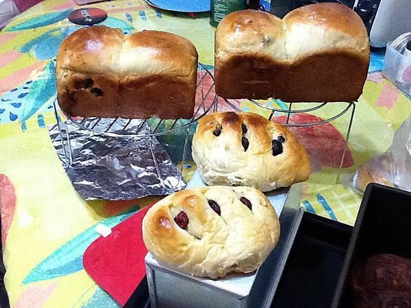 阿姆的麵包