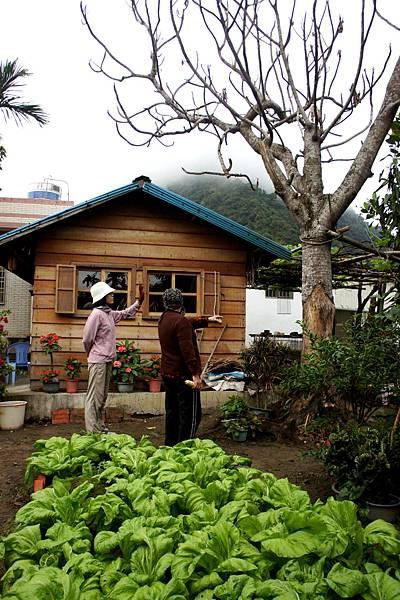 豐南部落~伊比桑的小屋