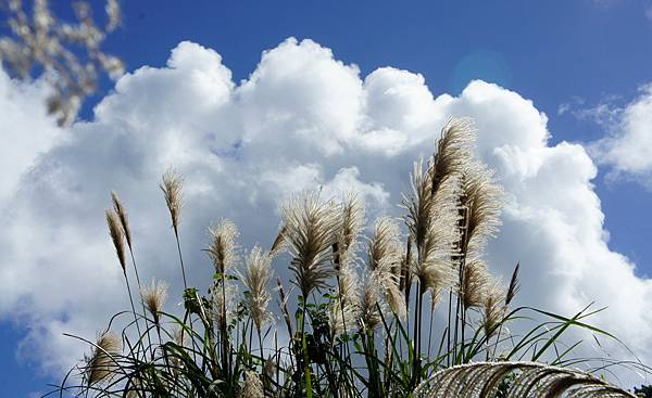 半島的天空~
