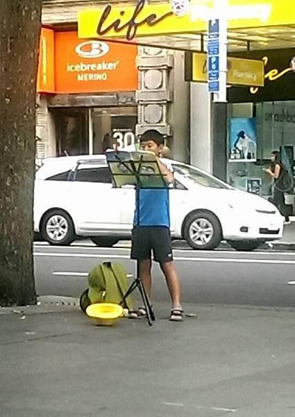紐西蘭~浪遊琴人~