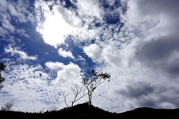 九棚的雲~