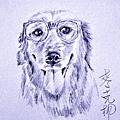 狗狗2.jpg