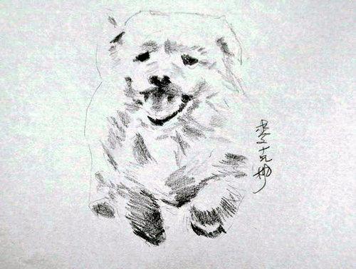 狗狗3.jpg