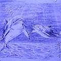 海底小動員3.jpg