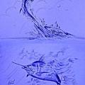 海底小動員4.jpg
