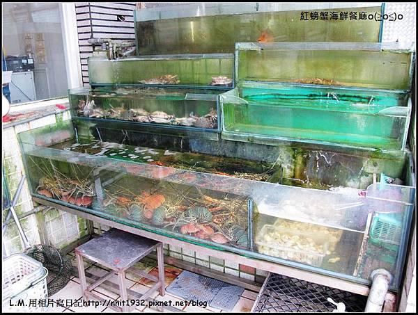 紅螃蟹01.jpg