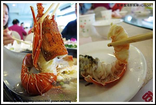 紅螃蟹25.jpg