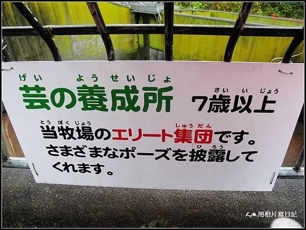 北海道第三天007.jpg