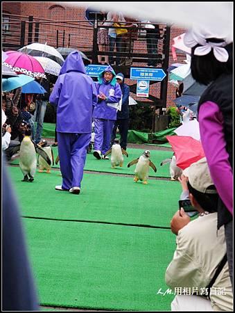北海道第三天027.jpg