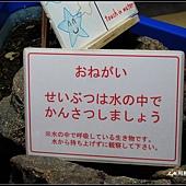 北海道第三天043.jpg