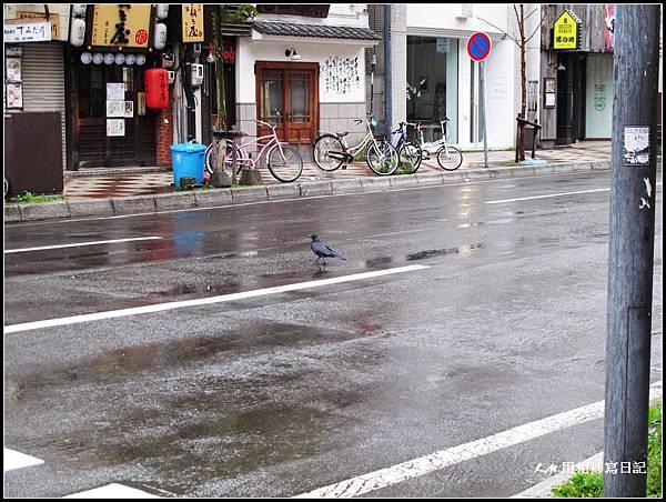 北海道第三天00013.jpg