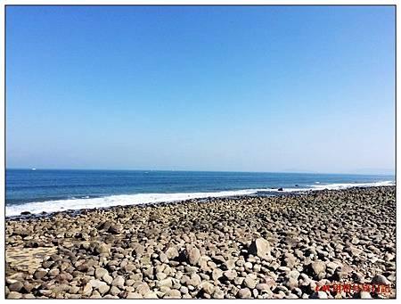 20141021北海岸洋荳子40.jpg