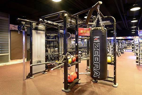 豐原健身工廠synrgy 360x型專業級多功能組合訓練站