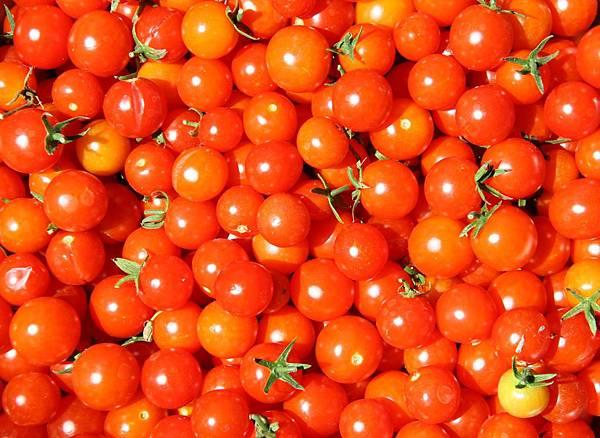 嘴饞還偷吃了點番茄