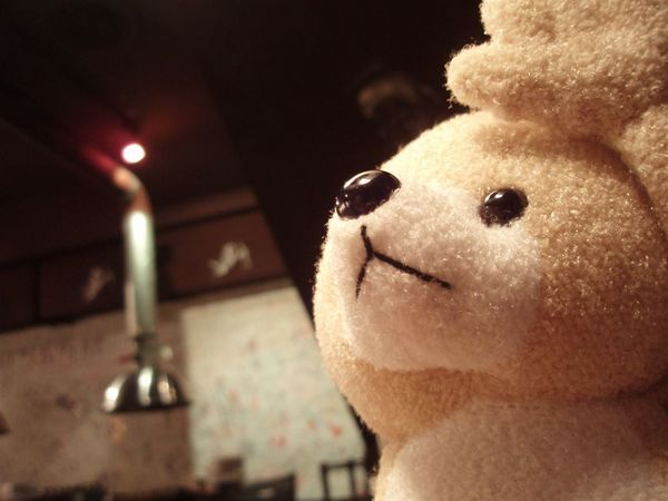 熊熊看天空
