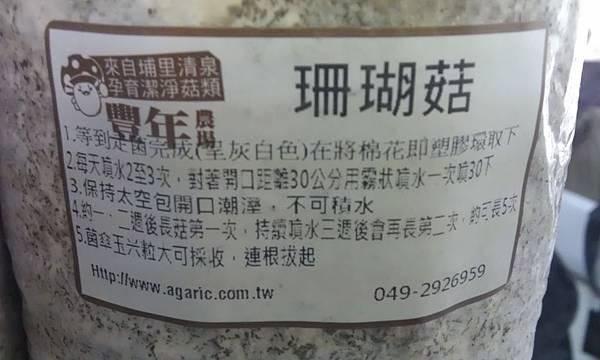 20121213-04-珊瑚瑰菇栽種說明