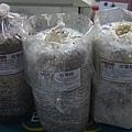 20121213-08-玫瑰菇(走菌中)、珊瑚菇、白雪菇(開封等收成)