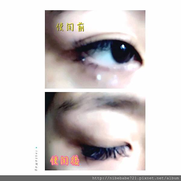 S__159096846.jpg