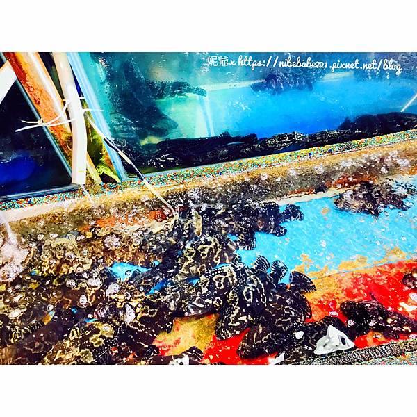 20201013望海亭海鮮餐廳_201013_8.jpg