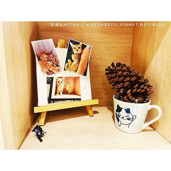 20210412貓禾咖啡_210412_6.jpg
