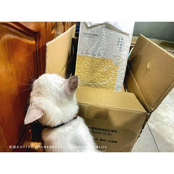 20210713凱舒細條型豆腐砂 貓砂_210713_11.jpg