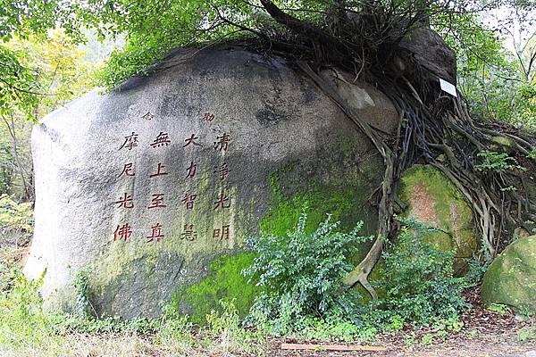 800px-Jinjiang_Cao'an_20120229-08
