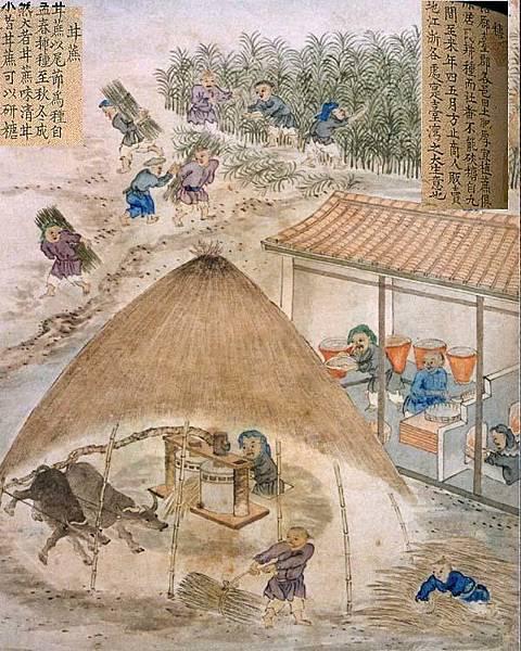 3古代糖廓製糖的圖畫