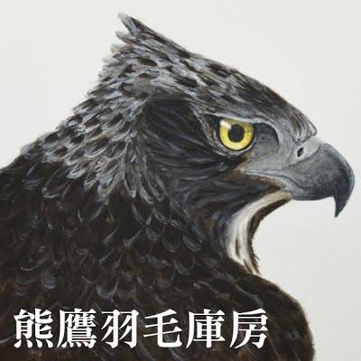 熊鷹羽毛庫房宣傳照1