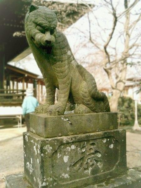 Tamon'in_Tokorozawa_guardian_komatora_(狛虎)_Agyo-right