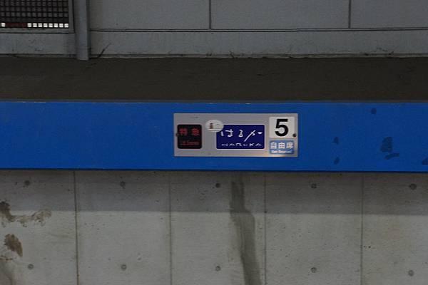 DSC07117.JPG