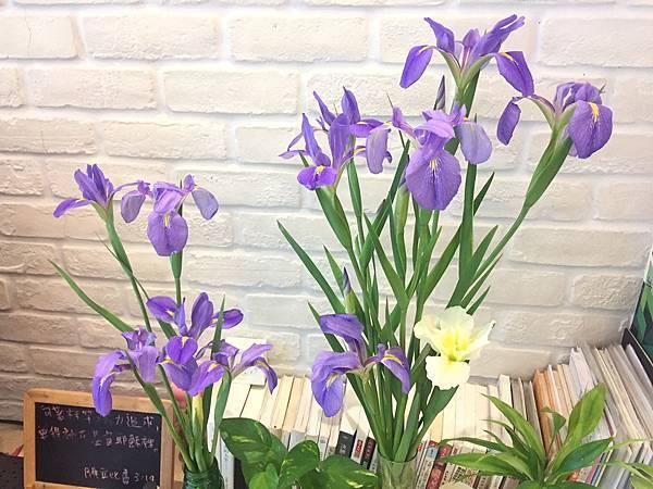 紫花1.jpg
