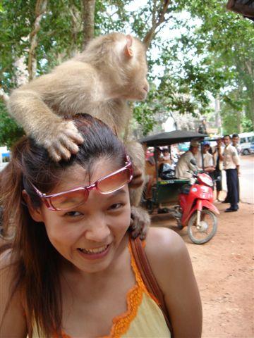 猴子騎到我頭上