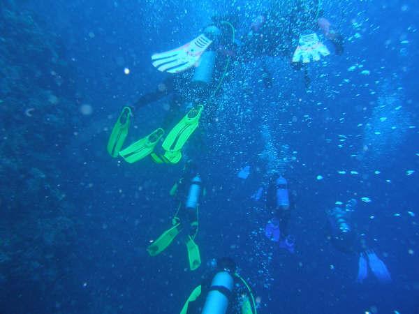 帛琉潛水 033.jpg