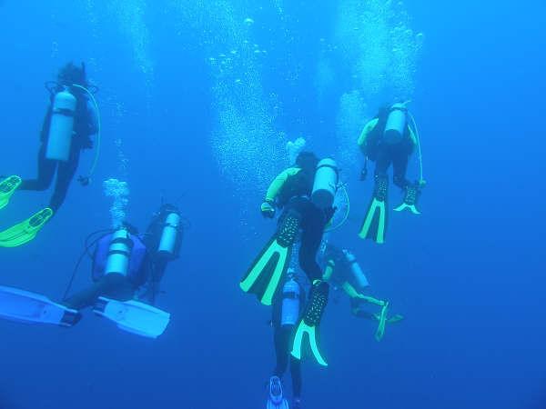 帛琉潛水 036.jpg