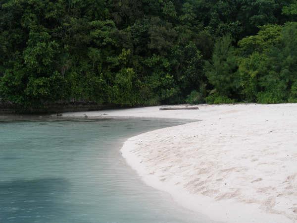 帛琉潛水 063.jpg