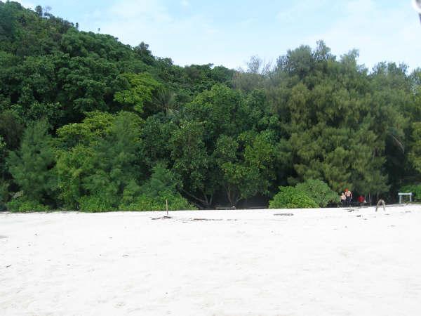 帛琉潛水 064.jpg