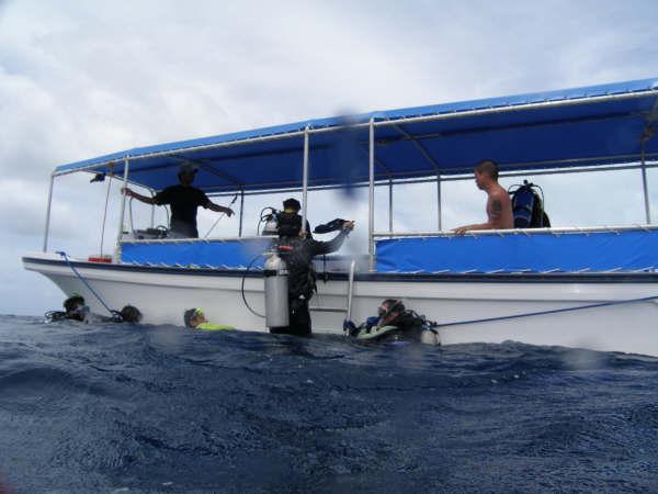 帛琉潛水 171.jpg