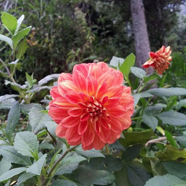 2012-09-01-17-03-24_photo