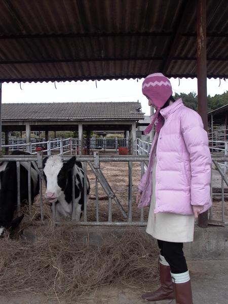 牛牛 你要吃草嗎