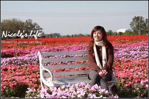 2008-Jan01-061.JPG