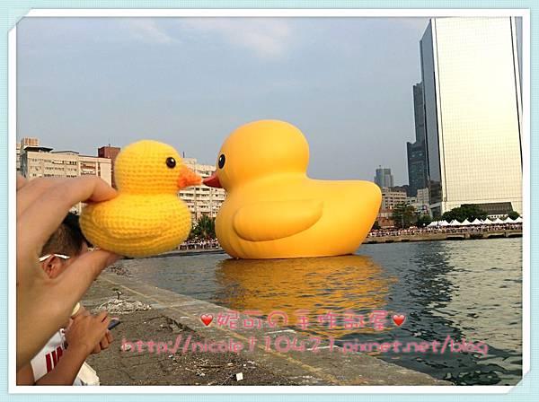 黃色小鴨鴨-4