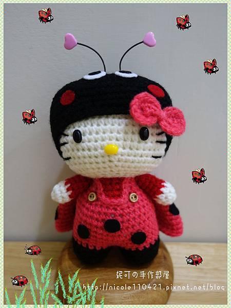 瓢蟲Kitty-1