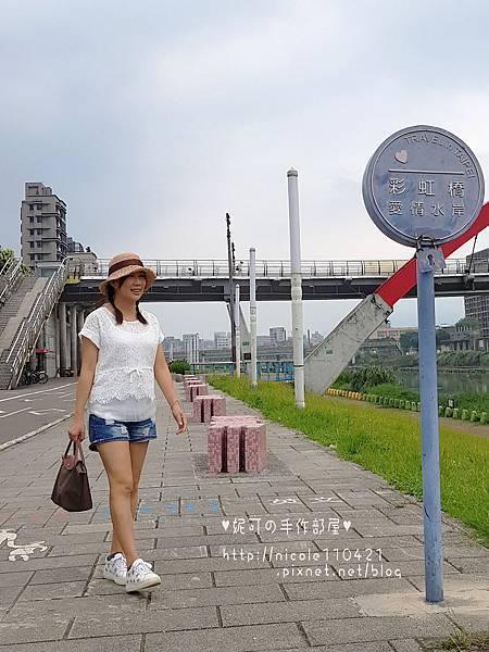 拉菲草帽no.6-5
